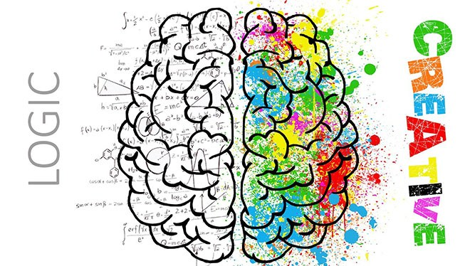 мозг творческий и рациональный